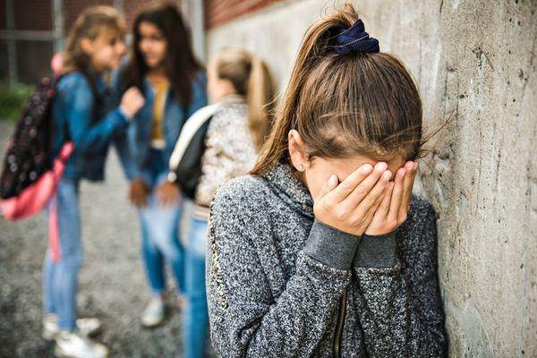 Harcèlement scolaire, mieux le comprendre pour mieux le combattre …